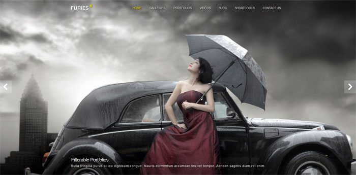 Furies Transparent Portfolio Photography Theme
